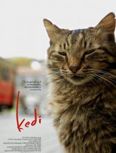 دانلود مستند Kedi 2016