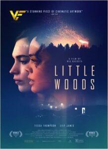دانلود فیلم جنگل کوچک Little Woods 2018 دوبله فارسی
