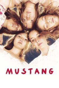 دانلود فیلم ترکی اسب وحشی Mustang 2015